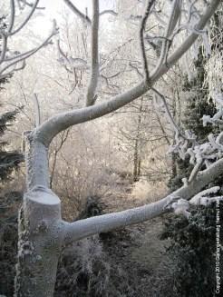2021-Winter022
